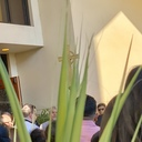 2019 Palm Sunday photo album thumbnail 7